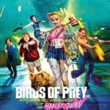 Birds of Prey 4K Review