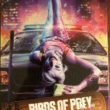 Birds of Prey Best Buy Steelbook